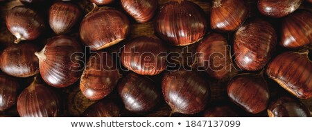 Full frame texture of roasted chestnuts Stock photo © ozgur