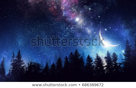 night stary sky and trees stock photo © deyangeorgiev
