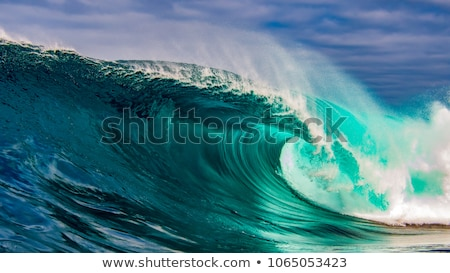 A beach with big waves Stock photo © bluering
