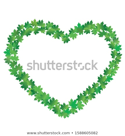 Stockfoto: Hart · frame · eps · 10 · tulpen