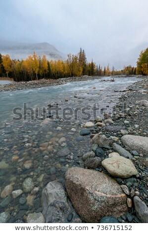 Wal turkoois rivier bergen Rusland water Stockfoto © TasiPas