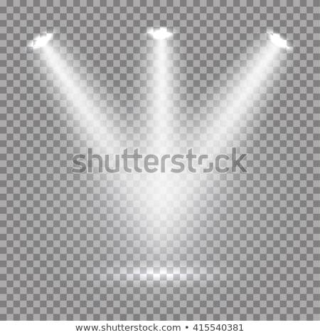 концерта · звезды · оркестра · певицы · звук · женщину - Сток-фото © sarts