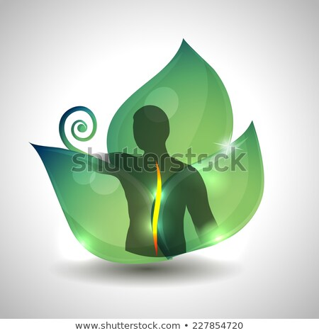 Human spine health care, Human spine silhouette and green leaf a Stock photo © Tefi