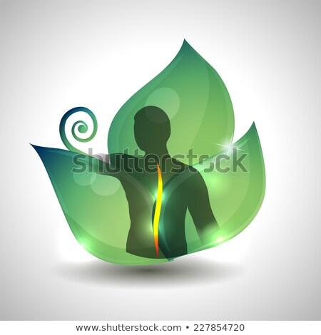 emberi · gerincoszlop · egészségügy · sziluett · zöld · levél · férfi - stock fotó © Tefi