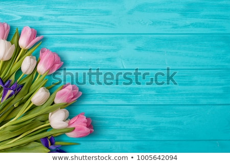 blossoming iris on a white wooden background stock photo © kotenko