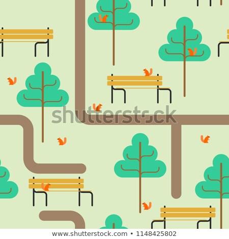 Parque mapa caminho árvore banco esquilo Foto stock © MaryValery