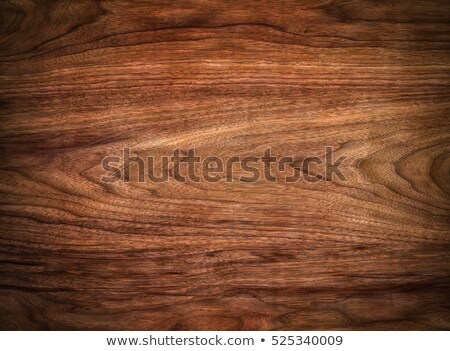 Wood grain in macro Stock photo © backyardproductions