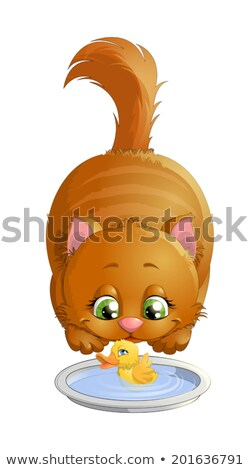 cute animals cat and duck playing in the room Stock photo © aminmario11