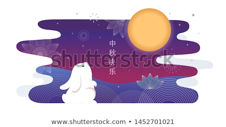 vector chinese moon rabbit illustration