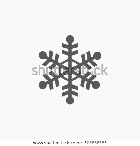 Silver Snowflakes Icons Set Stock photo © Voysla