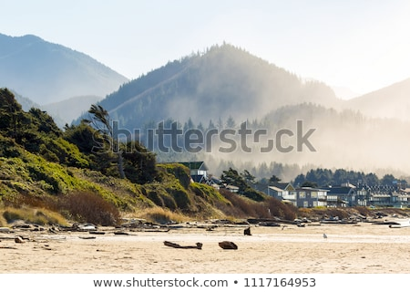 cannon beach oceanfront vacation homes stock photo © davidgn