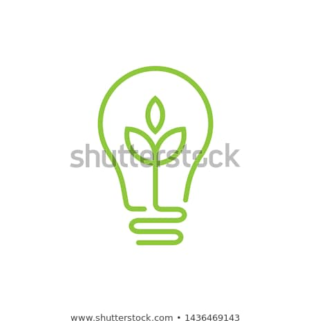 Eco lampadina suolo verde alberi Foto d'archivio © psychoshadow