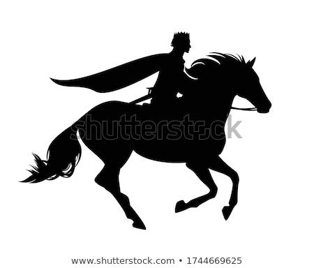 королевский white horse изолированный царя верхом спорт Сток-фото © MaryValery