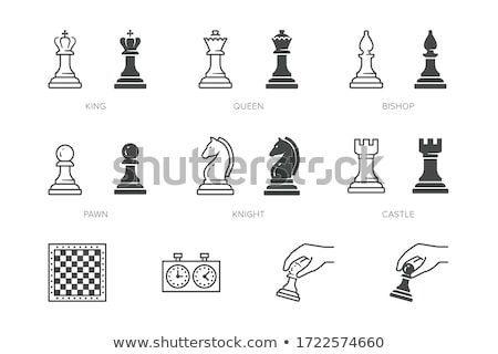 набор черный простой шахматам иконки белый Сток-фото © Evgeny89