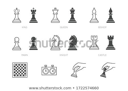 set of black simple chess icons on white stock photo © evgeny89