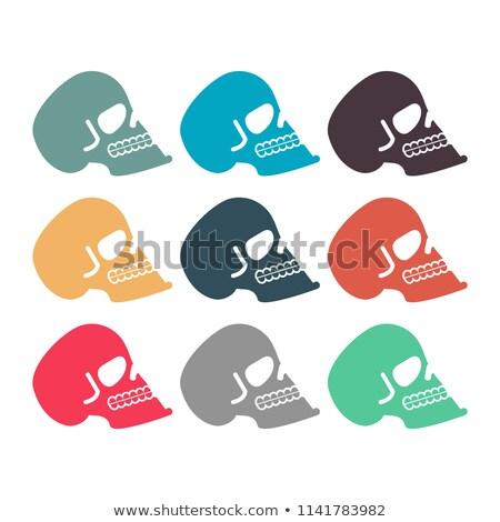 Colored skull set. Multicolored skeleton head. Symbol of death Stock photo © popaukropa