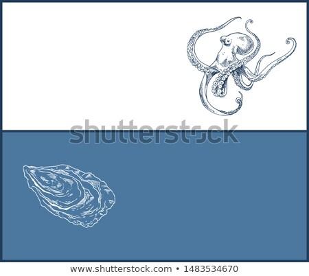 Pulpo ostra mariscos doble color gráfico Foto stock © robuart