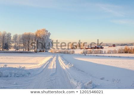 Winter land landschap berg dorp sneeuw Stockfoto © Kotenko
