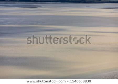 The bay in front of Mont Saint Michel in France.  Stock photo © doomko