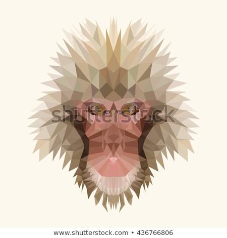 шимпанзе · Cartoon · продовольствие · улыбка · счастливым · лес - Сток-фото © colematt