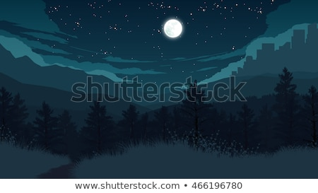 Forest scene at night time Stock photo © colematt
