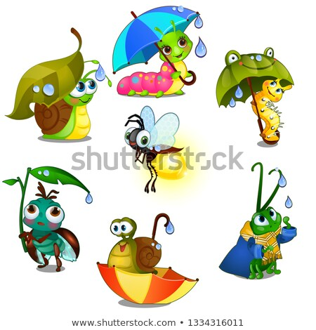 Set of cute joyful insects isolated on white background. Vector cartoon close-up illustration. Stock photo © Lady-Luck