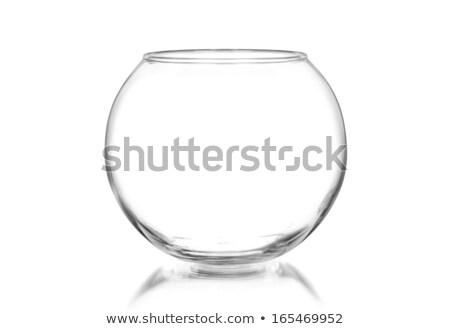 glass fishbowl with a fish Stock photo © mayboro