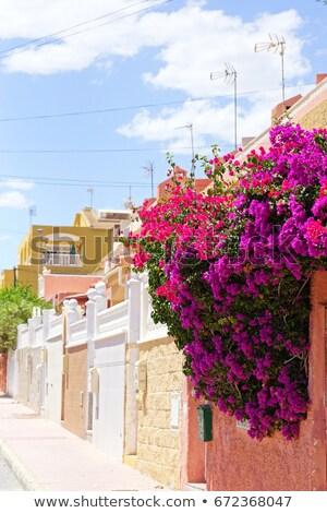 Foto stock: Charming Street In Torrevieja City Spain
