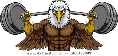 Adelaar mascotte gewichtheffen barbell lichaam bouwer Stockfoto © Krisdog