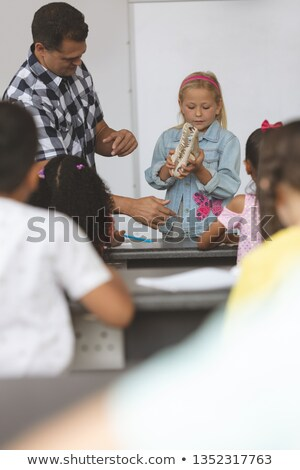 Front view of a Caucasian schoolgirl holding a skull in her hands and showing this one to others sch Stock photo © wavebreak_media