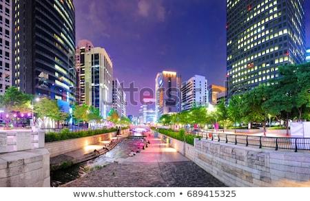 Stream Seoul gevolg stedelijke water gebouwen Stockfoto © galitskaya