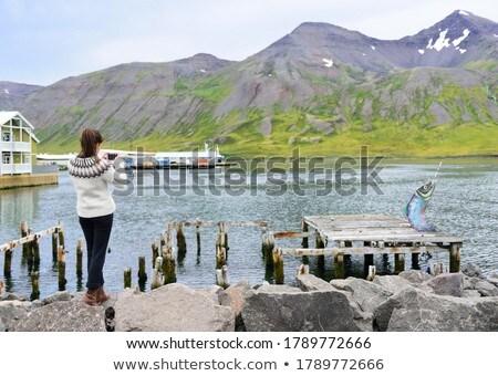 Tourist on Iceland taking photo of Siglufjordur Fjord wearing icelandic sweater. Woman visiting icel Stock photo © Maridav