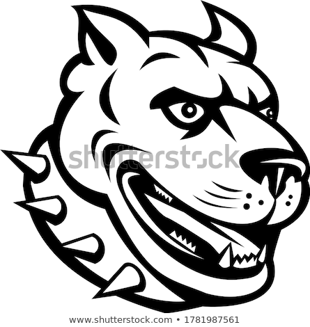 голову американский бык терьер pitbull сторона Сток-фото © patrimonio