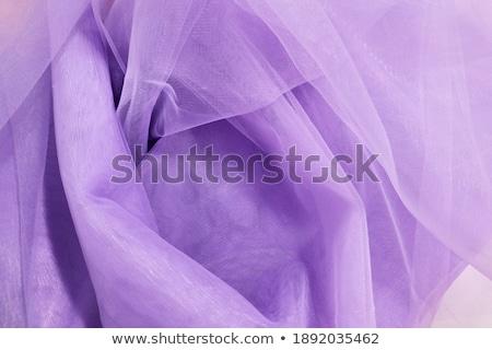 Kék csinos szőke nő nő szexi meztelen Stock fotó © disorderly