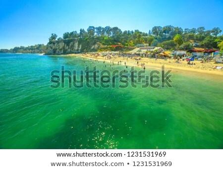 Paradijs prachtig strand zomer dag Stockfoto © kwest