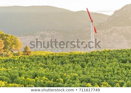Rüzgâr makine güzel gülen kız atış Stok fotoğraf © jayfish