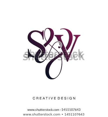 élégant modèle modernes design Creative vacances Photo stock © Lady-Luck