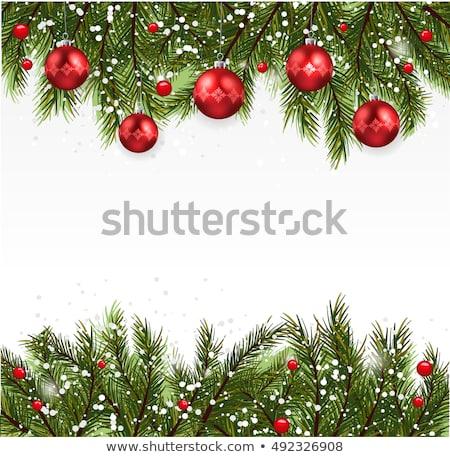 Christmas fir tree branch covered by snow card stock photo © karandaev