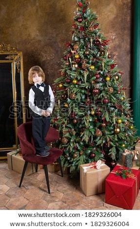 Noel · hediye · kutuları · şube · kapalı · kar - stok fotoğraf © karandaev