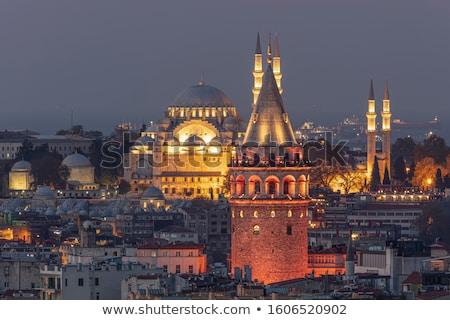 View on Galata Tower Stock photo © Givaga