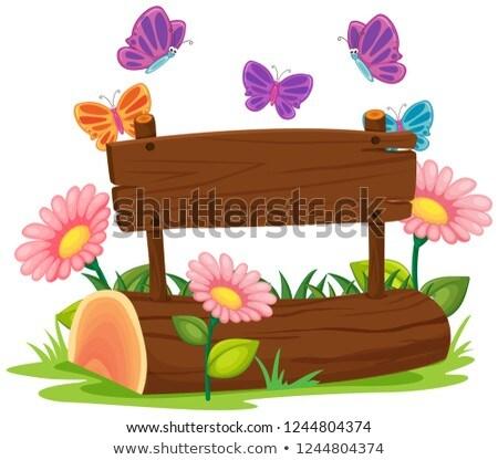 Imzalamak tahta doğa örnek çiçek ahşap Stok fotoğraf © colematt