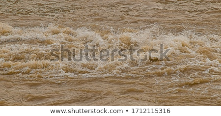 Fangoso acqua naturale terra fiume Foto d'archivio © Spectral