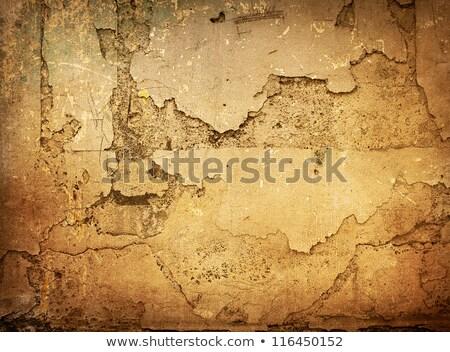茶色の汚れた壁-あなたのデザインに最適なテクスチャ ストックフォト © ilolab