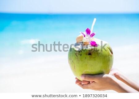 Fresh coconuts Stock photo © ldambies