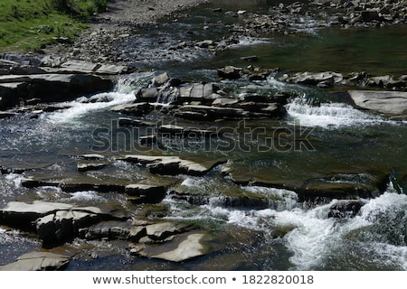 mountain river prut closeup stock photo © oleksandro