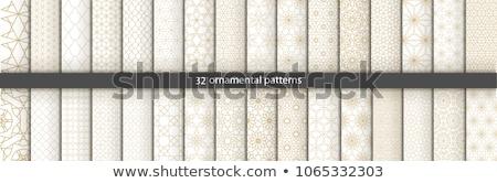Csipke végtelen minta vektor szövet vonalak hullámok Stock fotó © sanyal