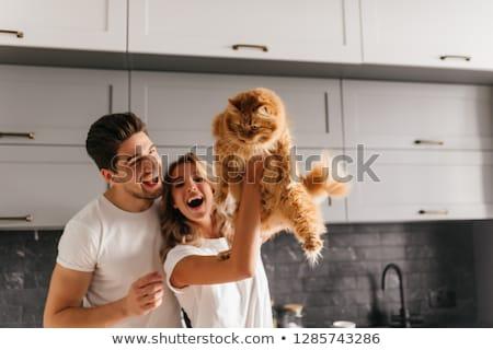 Boldog pár macska otthon díszállatok emberek Stock fotó © dolgachov