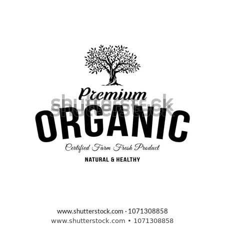 olive logo template vector illustration Stock photo © Ggs