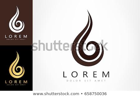 girl hairstyle vector logo icon Stock photo © blaskorizov