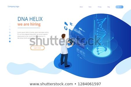 Technológia leszállás oldal pici emberek tudósok Stock fotó © RAStudio
